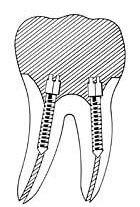 dental08